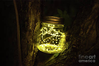 Photograph - A jar of fireflies by Paolo Sirtori