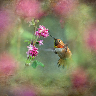 A Jewel In The Flowers Art Print