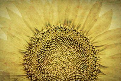 Photograph - A Kansas Flower by Lynn Sprowl