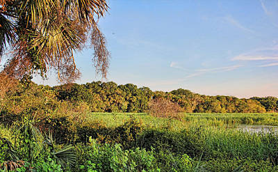 Photograph - A Land Called Myakka 5 by HH Photography of Florida