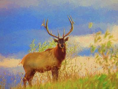Digital Art - A Large Bull Elk by Rusty R Smith