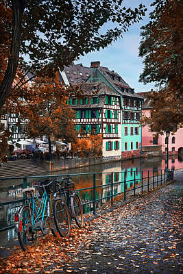 Transportation Royalty-Free and Rights-Managed Images - A Leafy Lane in Strasbourg  by Carol Japp