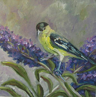 Painting - A Lesser Goldfinch by Susan  Spohn