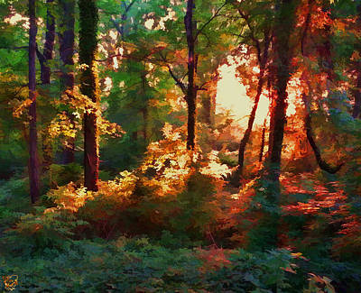 Manip Photograph - A Light In The Forest by Stephen Kinsey
