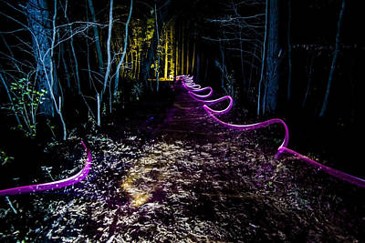 Pine Cones Photograph - A Light Painted Trail At Night  by Sven Brogren