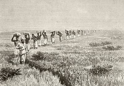 A Line Of Porters Carrying Expedition Print by Vintage Design Pics