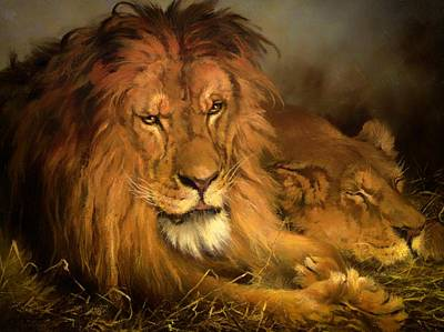 A Lion And A Lioness Art Print by Mountain Dreams