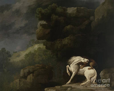 Big Teeth Painting - A Lion Attacking A Horse, 1770 by George Stubbs