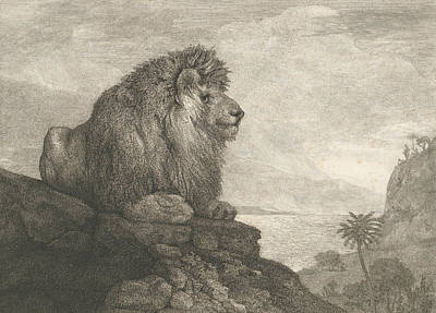 Relief - A Lion  by George Stubbs