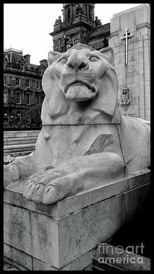 Photograph - A Lion Of The Cenotaph At George Square by Joan-Violet Stretch