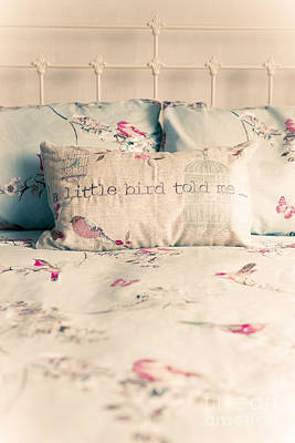 Cushions Photograph - A Little Bird Told Me by Amanda Elwell