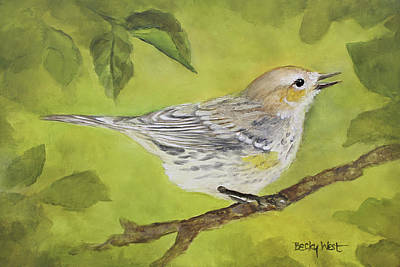 Drawing - A Little Birdie by Becky West