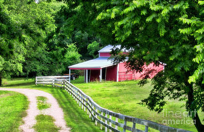 Photograph - A Little Bit Country by Joan Bertucci