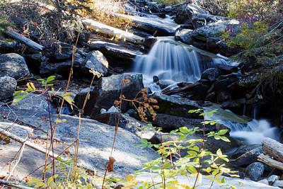 Photograph - A Little Creek by Laurie Pelham