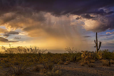 Photograph - A Little Desert Rain  by Saija  Lehtonen