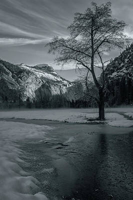 Photograph - A Little Light In The Winter Bw by Jonathan Nguyen