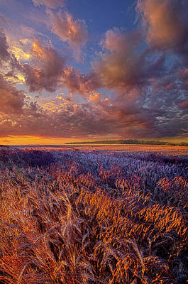 Unity Photograph - A Little Light by Phil Koch