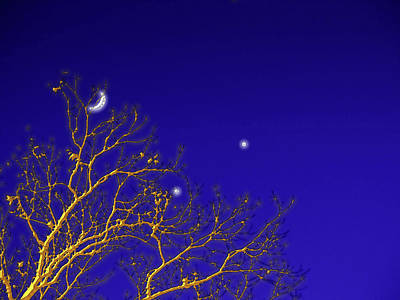Digital Art - A Little Night Magic by Wendy J St Christopher