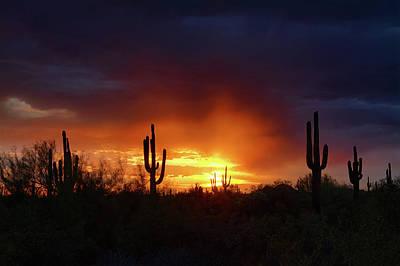 Rainy Day Photograph - A Little Red Rain At Sunset  by Saija Lehtonen