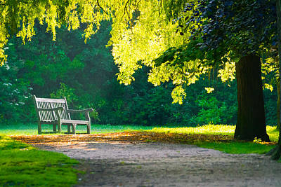 Photograph - A Lonely Bench by Will Gudgeon