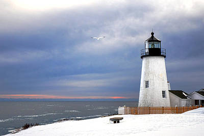 A Lonely Seagull Was Flying Over The Pemaquid Point Lighthouse Art Print by Olivier Le Queinec