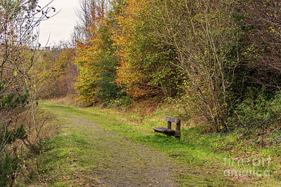 Photograph - A Lonely Seat 2 by Steve Purnell