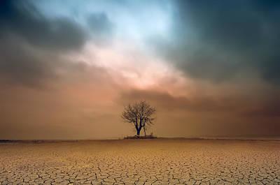A Loner ... Art Print by Piotr Krol (bax)