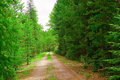 Gravel Road Photograph - A Long Gravel Road by Jeff Swan