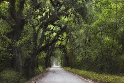 Photograph - A Long Road Home - Botany Bay by Ken Barrett