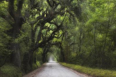 Photograph - A Long Road Home - Botany Bay by Ken Barrett