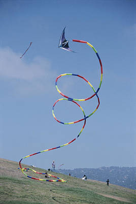 Kite Wall Art - Photograph - A Long-tailed Kite Soars by Stephen Sharnoff
