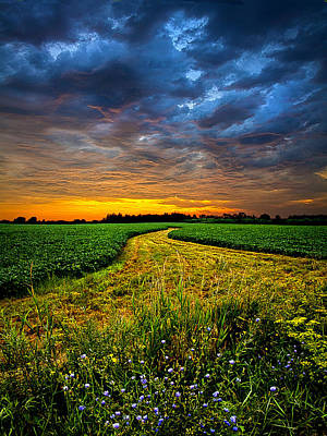 Natural Color Inspired Photograph - A Long Walk by Phil Koch
