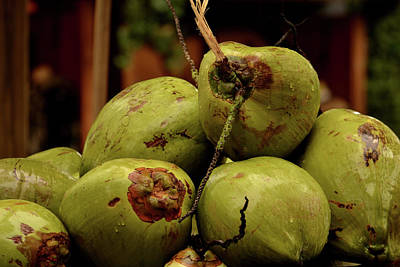 Photograph - A Lovely Bunch Of Coconuts by Nadalyn Larsen