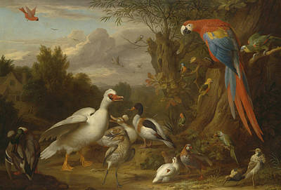 Painting - A Macaw, Ducks, Parrots And Other Birds In A Landscape by Jacob Bogdani