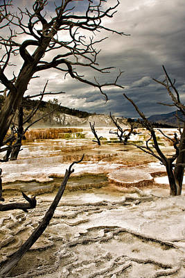 Photograph - A Mammoth Storm by Lana Trussell