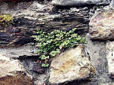 Photograph - A Medieval Town Wall by Sarah Loft