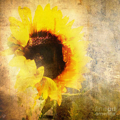 A Memory Of Summer Art Print by LemonArt Photography