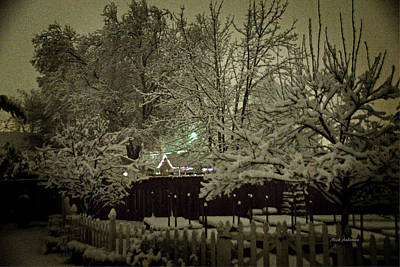 Photograph - A Mid Winter's Night by Mick Anderson