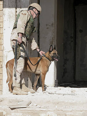 Afghanistan Photograph - A Military Working Dog And His Handler by Stocktrek Images