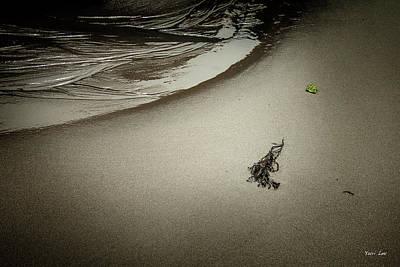 Photograph - A Minimalist Beach In Rockport Ma. by Yuri Lev