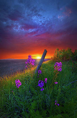 Photograph - A Moments Notice by Phil Koch
