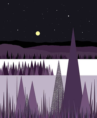 A Moonlit Winter Night Art Print