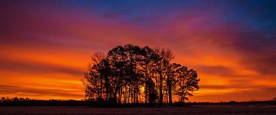 Photograph - A Morning At Center Grove by John Harding