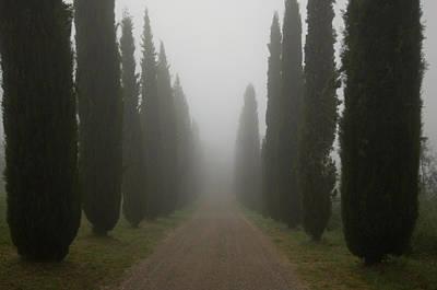 Gravel Road Photograph - A Morning Mist Makes Its Way by Joel Sartore