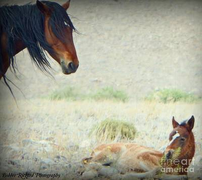 Photograph - A Mothers Love  by Bobbee Rickard