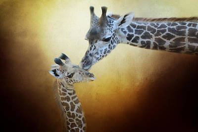 A Mother's Love Print by Lynn Bauer