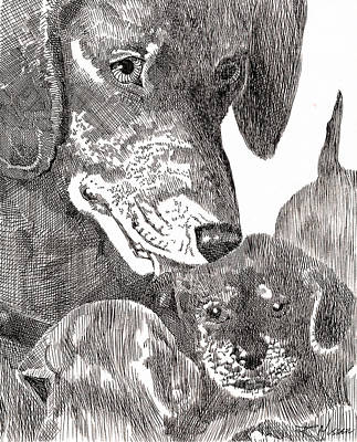 Robbi Musser Drawing - A Mother's Love by Robbi  Musser