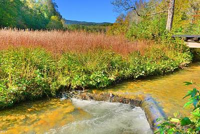 Photograph - A Mountain Stream by Lisa Wooten
