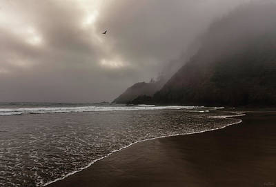 Photograph - A Muted Afternoon by Rick Furmanek