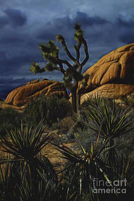 A Mysterious Stormy Desert Sky Art Print
